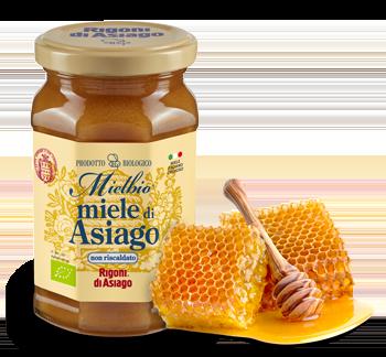 Miele  di Asiago (CREMOSO)